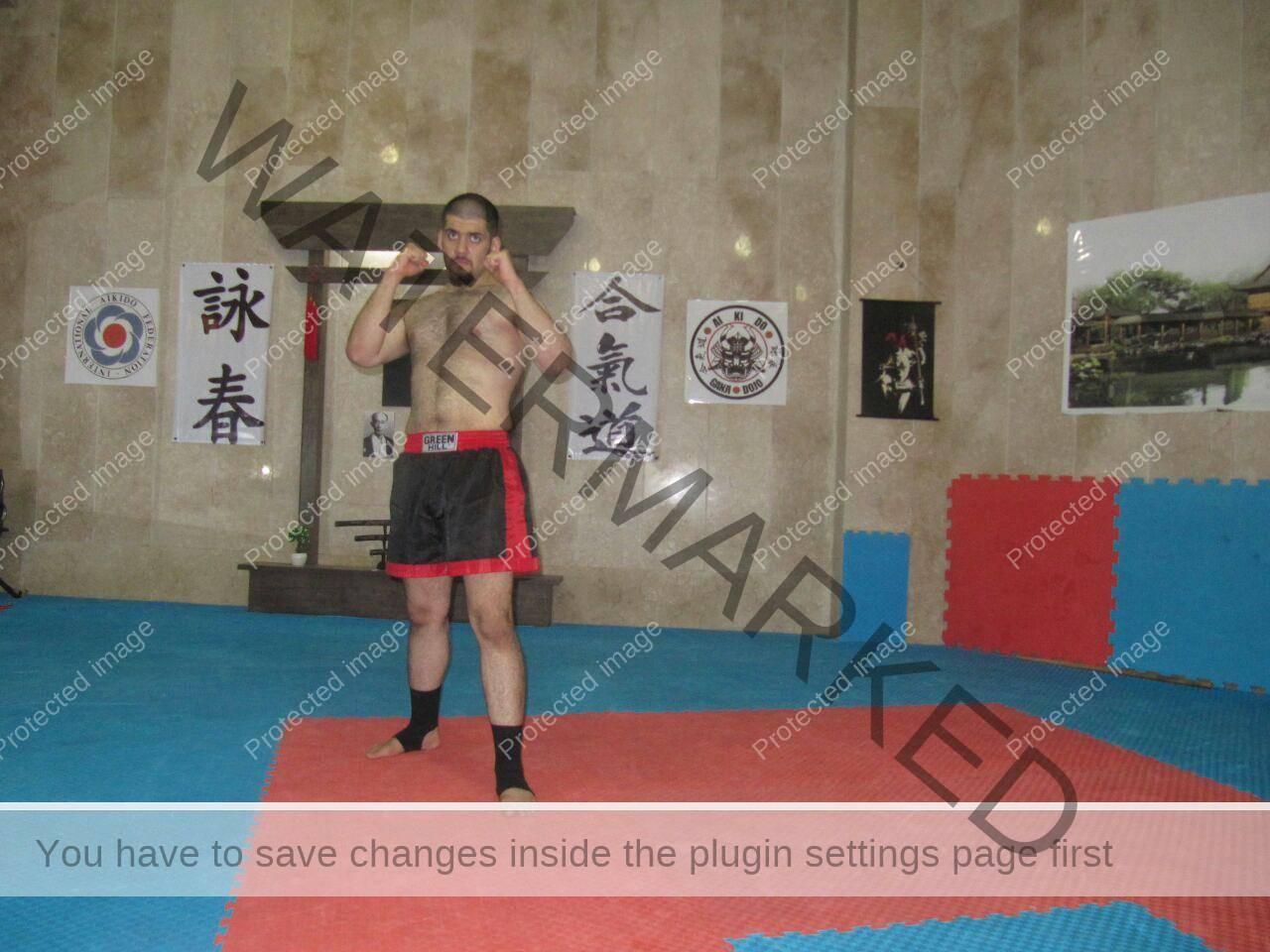محمد گنجی مهر