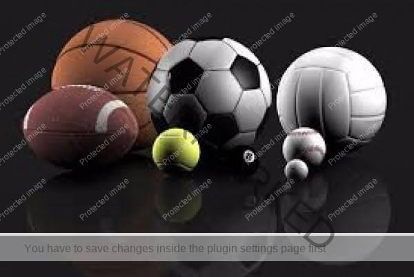 سالن ورزشی شهید میر امین محمدی