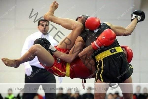 رضاعابدین پور