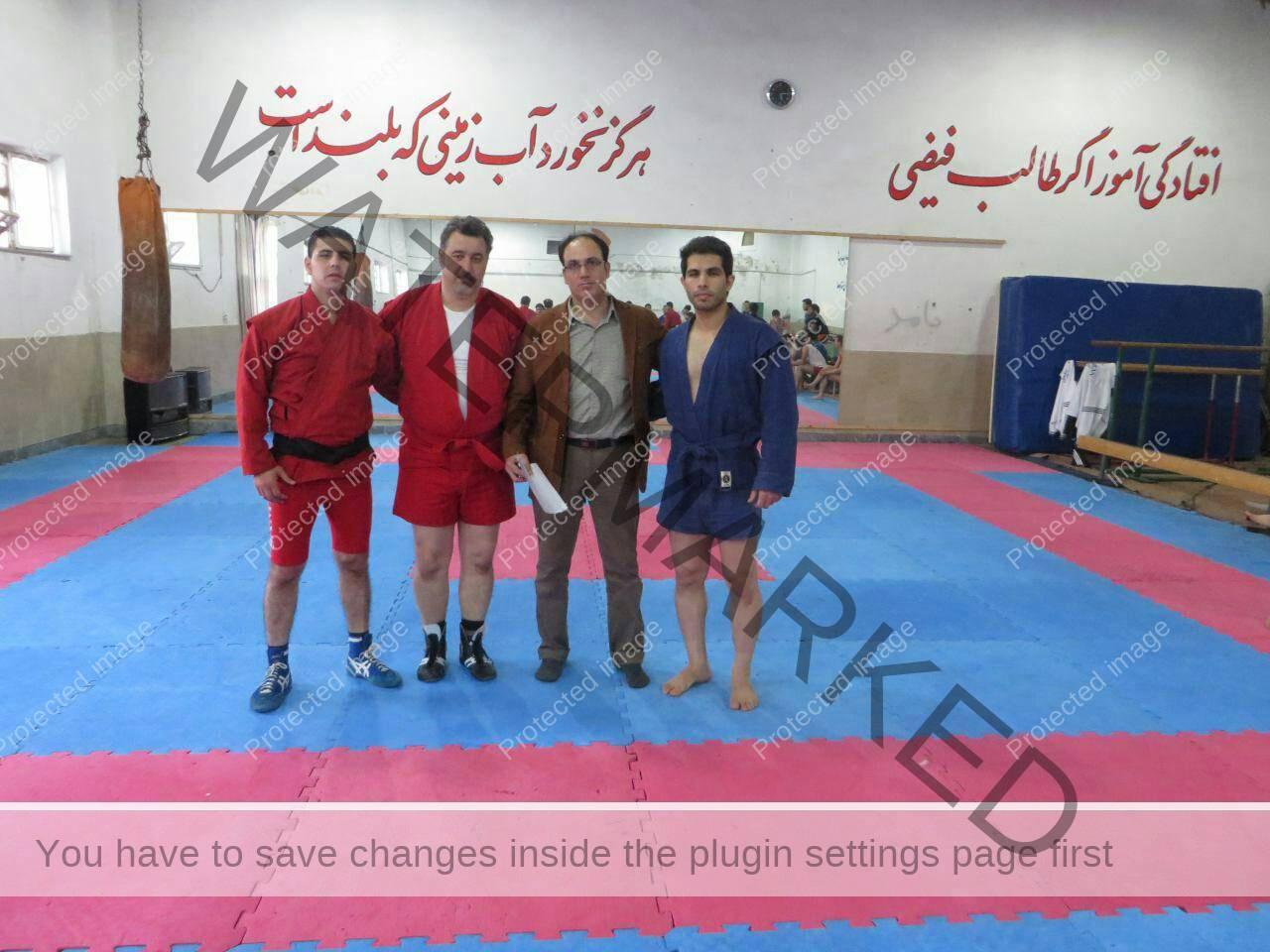 سید سعید ضیائی