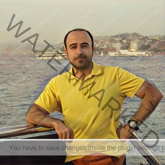 سید حسن موسوی