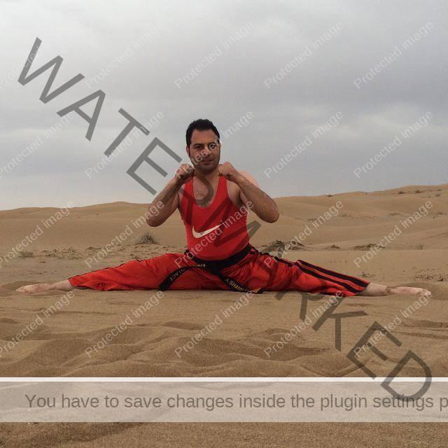 علی شمسی پور