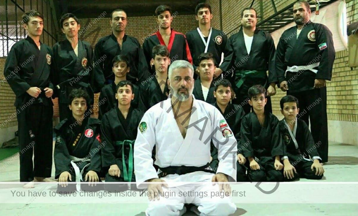 محمود ابراهیمی