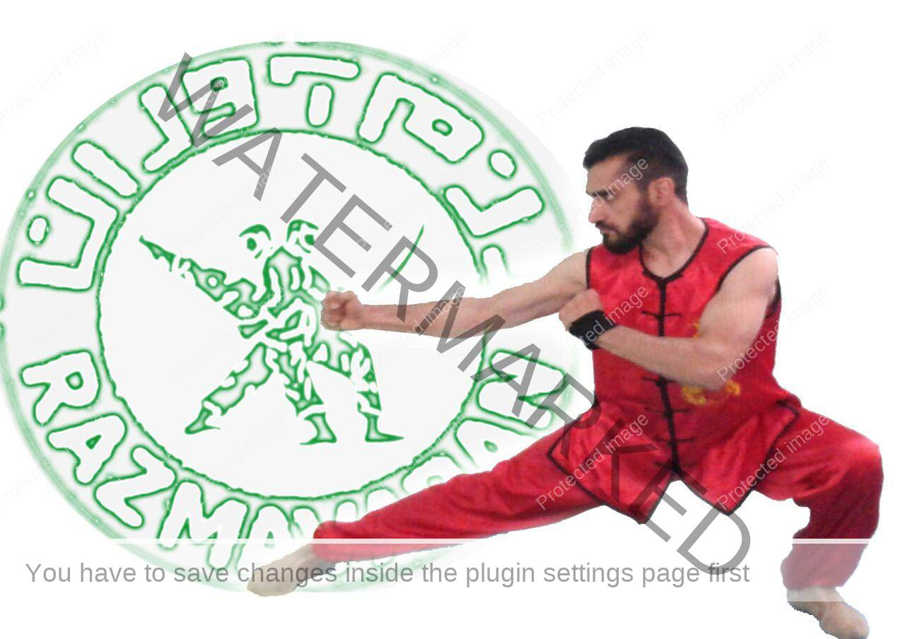 مسعود ترکاشوند