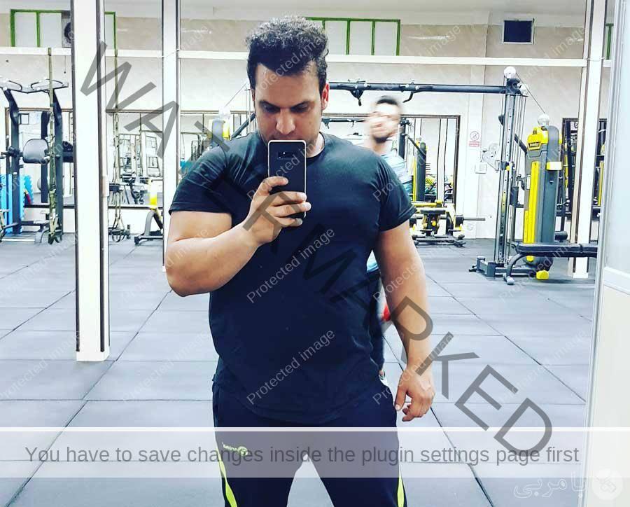 سید حمید محمدی